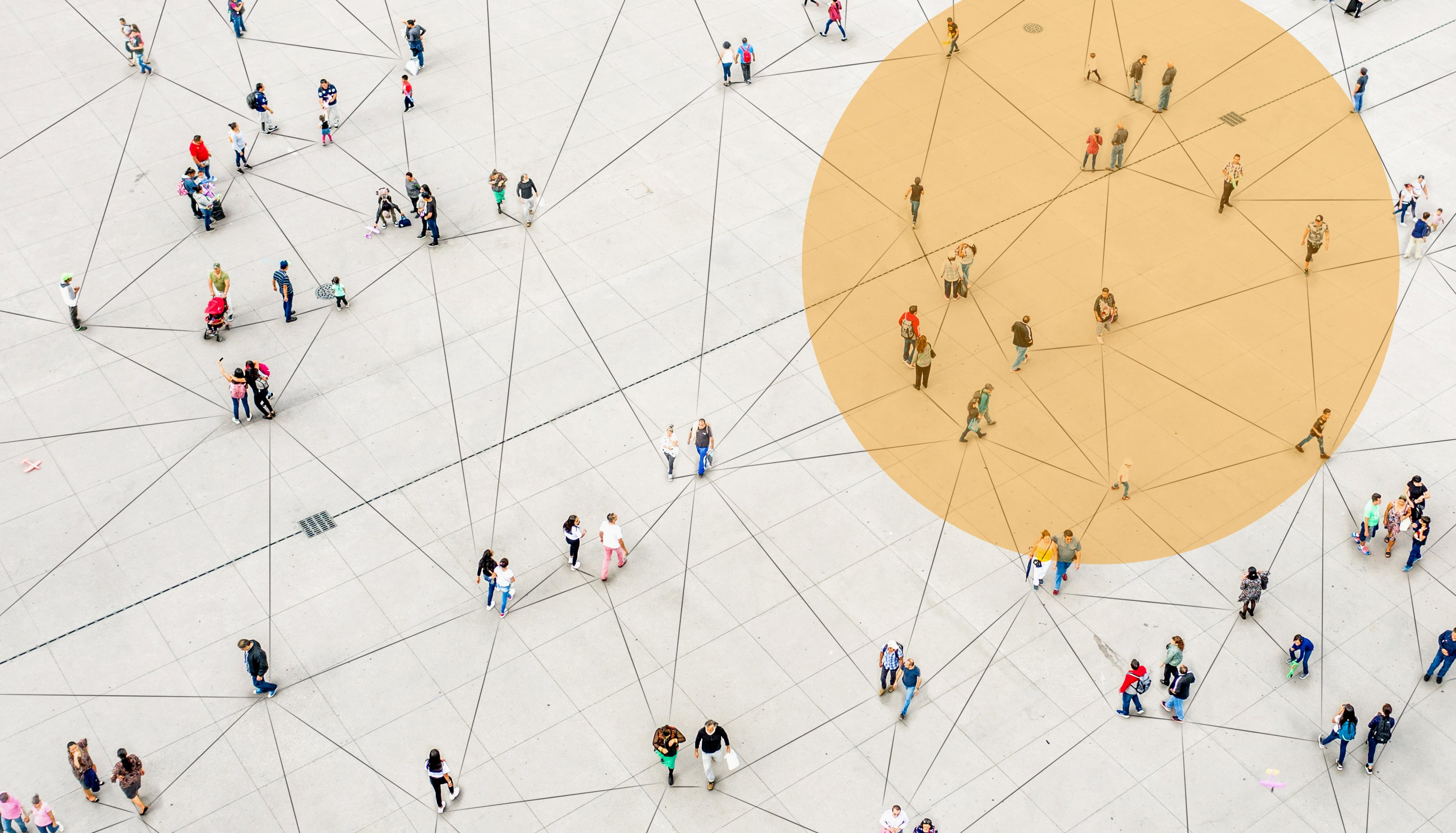 Shows a complex network of people that are interconnected.